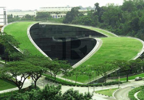 large_singapore_nanyang_green_roof